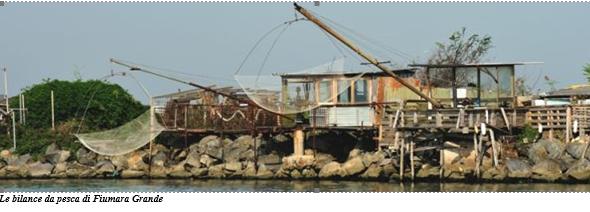 Questa immagine ha l'attributo alt vuoto; il nome del file è bilance-da-pesca.png