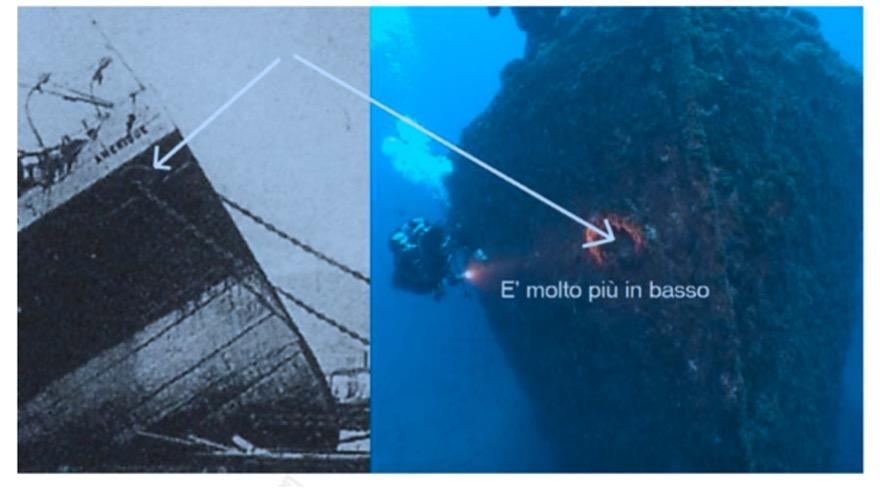 Questa immagine ha l'attributo alt vuoto; il nome del file è COMPARAZIONE-OCCHIO-DI-CUBIA-AMERIQUE-BOWESFIELD.jpg