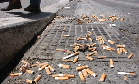 Why cigarette butts threaten to stub out marine life by Hannah Gould