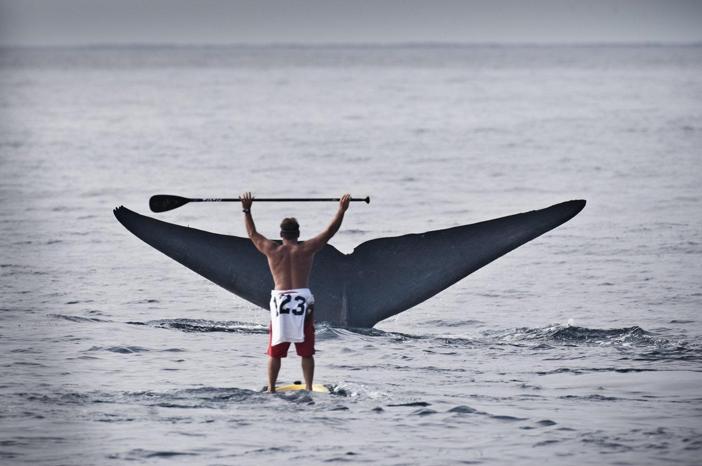 Fotografi del mare: Bo Bridges