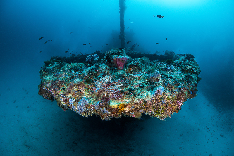 Improve your underwater wreck photography with these essential tools and tips for lighting, composing and shooting different scenes