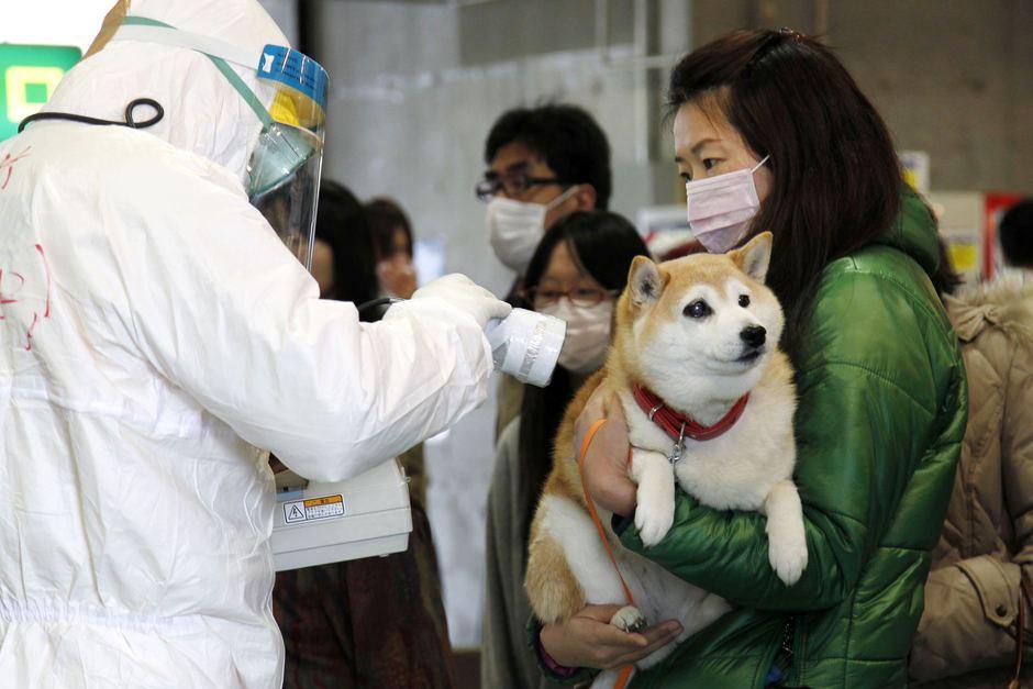 Trovato un livello di radiazioni a Fukushima a livelli 'inimmaginabili'