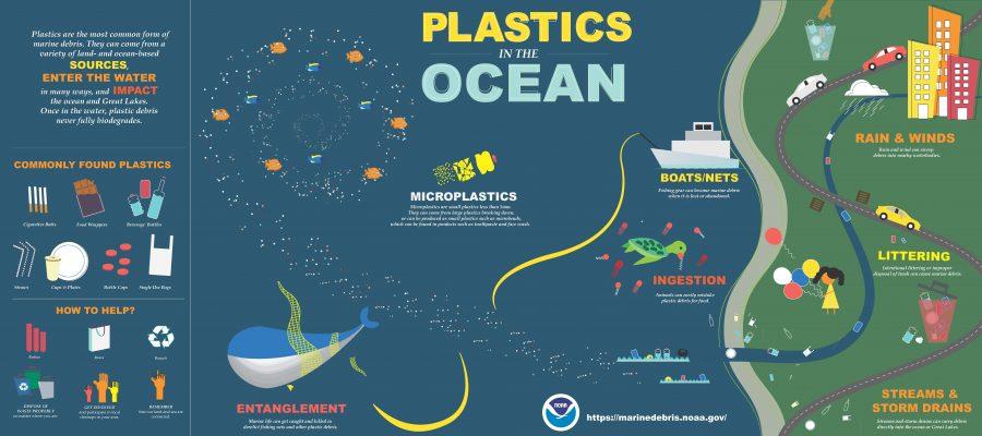 Importante: come riconoscere i diversi tipi di plastiche