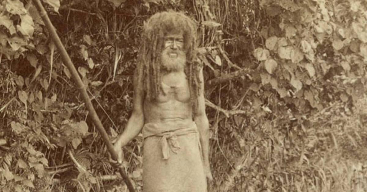 Il cannibalismo nel XIX secolo