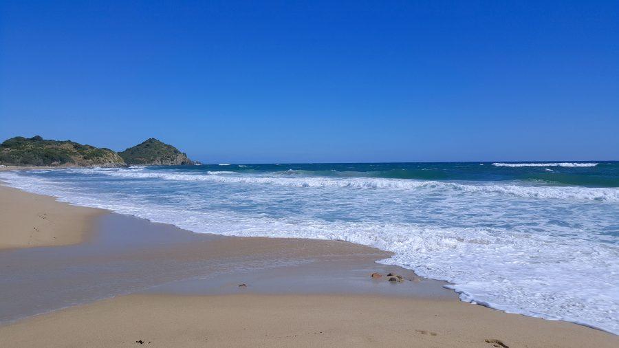Il ruolo degli oceani nell'assorbimento del carbonio