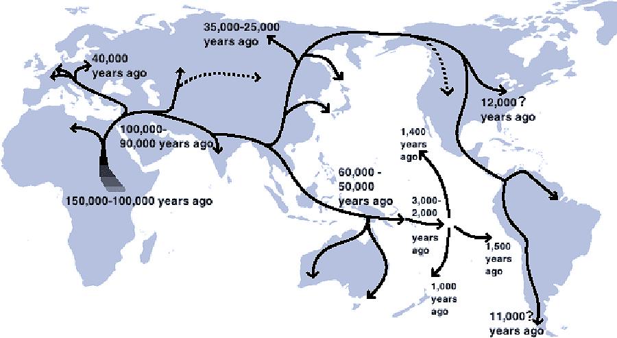Mitogenomi antichi di Fenici della Sardegna e del Libano: una storia di insediamento, integrazione e mobilità femminile di E. Matisoo-Smith et alii.